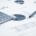 PAREGGIO DI BILANCIO: VIA LIBERA ALL'APPLICAZIONE DELL'AVANZO NEL 2018